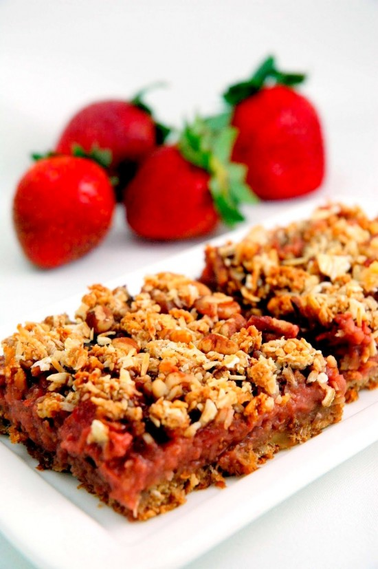 Fruit 'n' Oat Squares | A Dash of Compassion