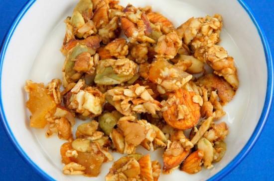 Raw Vegan Maple Pecan Granola   A Dash of Compassion