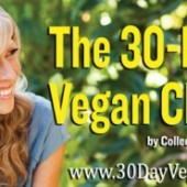 the-30-day-vegan-challenge