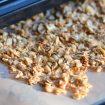 Dehydrator basics & granola